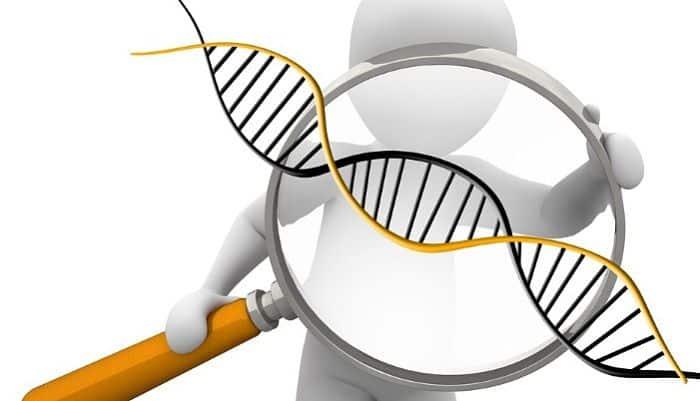 La ciencia de los genes