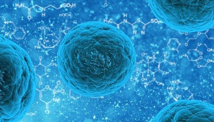 La ciencia de la celula