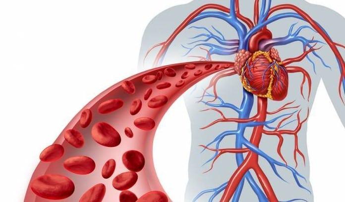 enfermedades que trata la angiologia