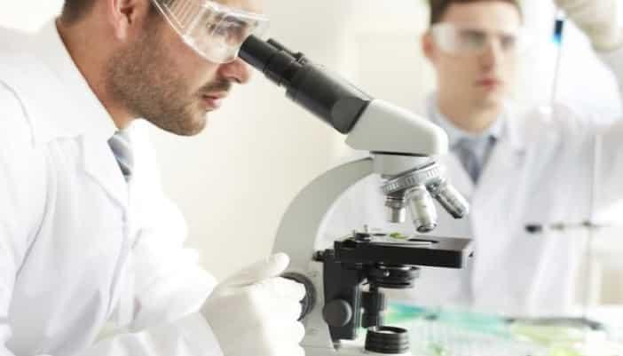 anatomia microscopica