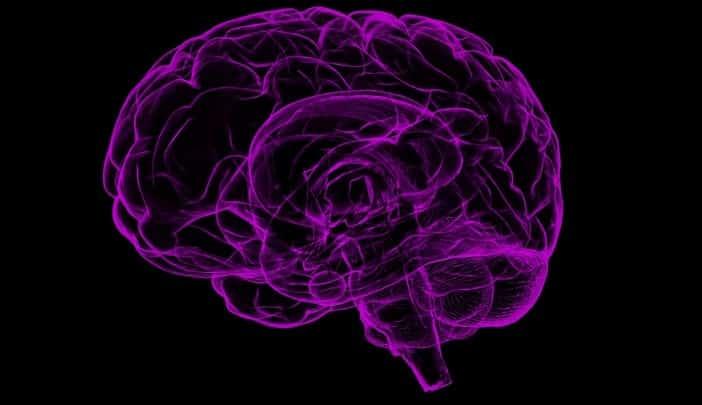 Definicion del sistema nervioso