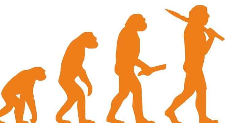 Consecuencias de la evolución