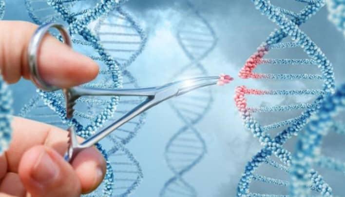 aplicaciones de la genetica molecular