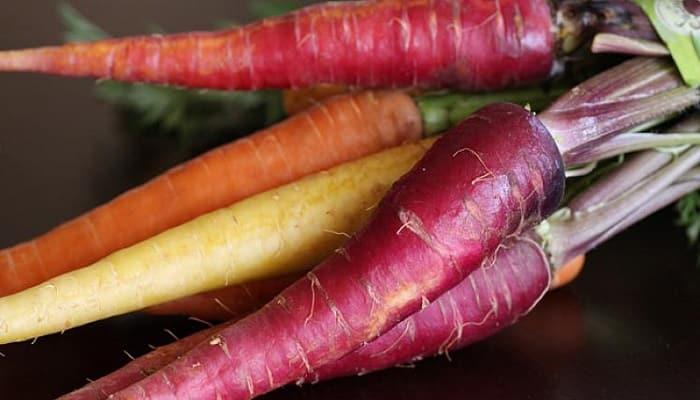 zanahorias-3